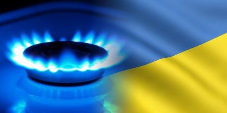 Кировоград этой зимой будет отапливаться альтернативными видами топлива