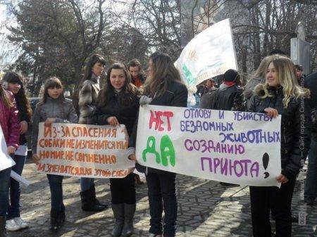 Рядом с городским советом Кировограда митингуют бездомные